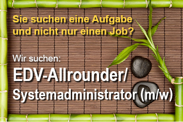 Edv-Allrounder-in-Systemadministrator-m-w